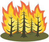 Global fire season 2015